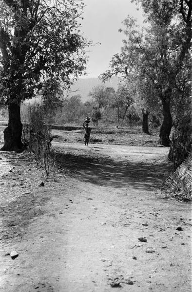 track-into-village